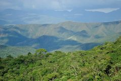 Brazil Mountains and forest Stock Image