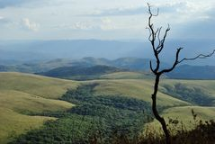 Brazil Mountains. Gandarela mountain located at Minas Gerais Estate. Brazil Stock Image