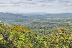 Brazil nature Royalty Free Stock Photography