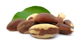 Brazil nut. Is a South American tree Bertholletia excelsa in the family Lecythidaceae, and also the name of the tree's commercially harvested edible seeds. The Stock Photos