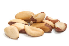 Free Brazil Nut Royalty Free Stock Images - 13341099