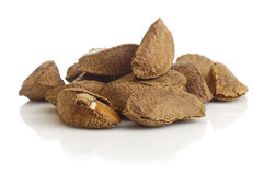 Brazil nut Royalty Free Stock Image