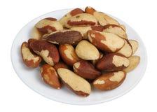 Brazil Nut (Bertholletia excelsa) Royalty Free Stock Image