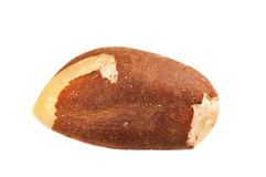 Brazil nut isolated Royalty Free Stock Photo