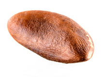Brazil nut isolated on white Stock Image