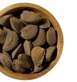 Brazil Nut Stock Photography