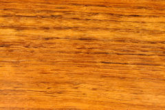 Brazil Nut Wood Texture Stock Image
