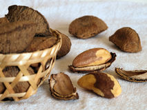 Brazil nuts Stock Images