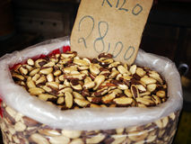Brazil nuts. For sale - Brazil (Bertholletia excelsa royalty free stock photography
