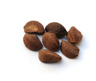 Brazil nuts. Shot of some brazil nuts on a white background stock images