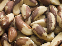 Brazil Nuts Royalty Free Stock Images