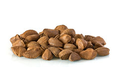 Brazil nuts Royalty Free Stock Image