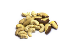 Brazil Nuts and Cashew Nuts Small Pile Isolated Stock Photography