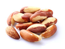 Brazil nuts in closeup Stock Photography