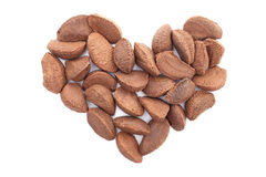 Brazil nuts in a heart shape Stock Image