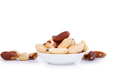 Brazil nuts isolated on white background Royalty Free Stock Image