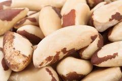 Brazil nuts macro Stock Photography