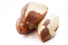 Brazil nuts. Macro of three raw brazil nuts isolated on a white background Stock Photos