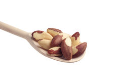 Brazil nuts in spoon Stock Photography
