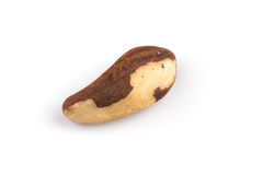 Brazil nuts on white close up Royalty Free Stock Images
