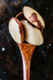 Brazil nuts in wooden spoon over the black metal background. Royalty Free Stock Photo