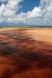 Brazil Praia da Forte Eco-reserve estuary. Brazil, State of Bahia, Praia de Forte ecological reserve, sediment and tannins flow to river estuary after heavy rain Royalty Free Stock Images