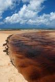Brazil Praia da Forte Eco-reserve estuary. Brazil, State of Bahia, Praia de Forte ecological reserve, sediment and tannins flow to river estuary after heavy rain Stock Photos