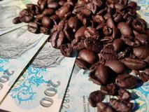 Brazil roasted coffee beans placed at banknotes stock image