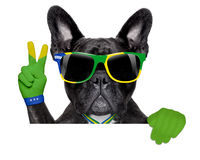 Brazil soccer dog. With victory or peace fingers above blank white banner or placard Stock Photo
