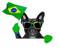 Brazil soccer dog. Waving a flag above white blank  banner or placard Stock Image
