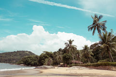 Brazilean tropical beach Royalty Free Stock Images