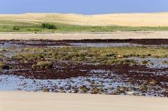 Brazilië, Pititinga, strand royalty-vrije stock afbeeldingen