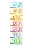 Braziliaans Geld Royalty-vrije Stock Afbeeldingen