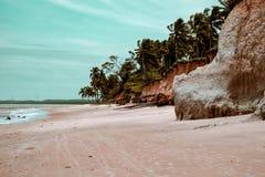 Braziliaans strandlandschap royalty-vrije stock fotografie