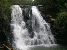Braziliaanse Cascade - Paraty royalty-vrije stock foto