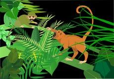 Braziliaanse groene apensaimiri en aap-huiler Stock Afbeelding