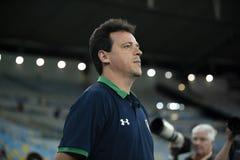 Braziliaanse Kop 2019 royalty-vrije stock afbeeldingen