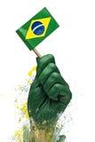 Braziliaanse ventilatorspatriot Royalty-vrije Stock Afbeelding