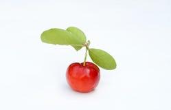 Brazilian Acerola Fruit Stock Photos