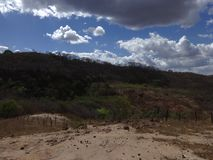 "Brazilian Northeast ""sertão"" Landscape. Nordeste Farm stock photography"