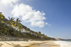 Brazilian Beach Royalty Free Stock Photography