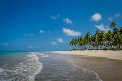 Brazilian Beaches-beach of Carneiros, Pernambuco Royalty Free Stock Image