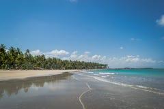 Brazilian Beaches-beach of Carneiros, Pernambuco Stock Photo