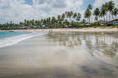 Brazilian Beaches-beach of Carneiros, Pernambuco Royalty Free Stock Images