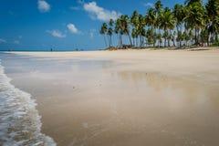 Brazilian Beaches-beach of Carneiros, Pernambuco Royalty Free Stock Photo