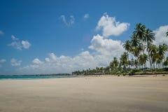 Brazilian Beaches-beach of Carneiros, Pernambuco Royalty Free Stock Photography