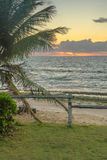 Brazilian Beaches-Pontal do Coruripe, Alagoas Royalty Free Stock Photos