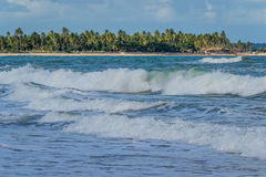 Brazilian Beaches-Pontal do Coruripe, Alagoas Stock Photos
