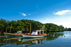 Brazilian boats Royalty Free Stock Photography
