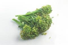 Brazilian Broccoli. Brassica oleracea L. var. italica Plenck Royalty Free Stock Image